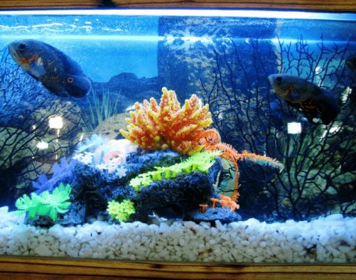 Aquarium LED Strip Lights